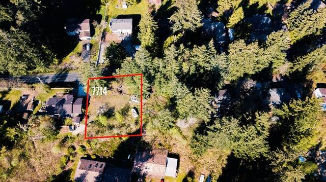 7714 182nd Ave E, Bonney Lake, WA 98391 (#1792420) :: Priority One Realty Inc.