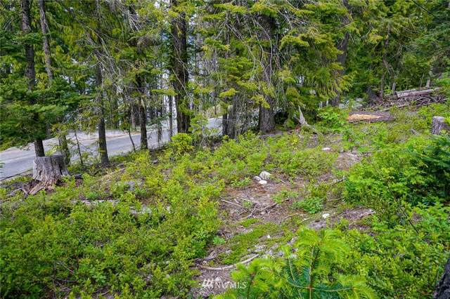0 Cedar Brae Road, Leavenworth, WA 98826 (#1792463) :: Stan Giske