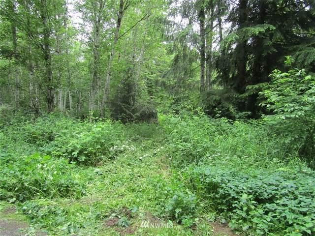0 Davis Lake Road, Morton, WA 98356 (#1793013) :: Becky Barrick & Associates, Keller Williams Realty