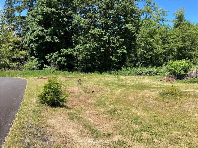 7 Alger Creek Heights Road, Cathlamet, WA 98612 (#1793087) :: Keller Williams Western Realty