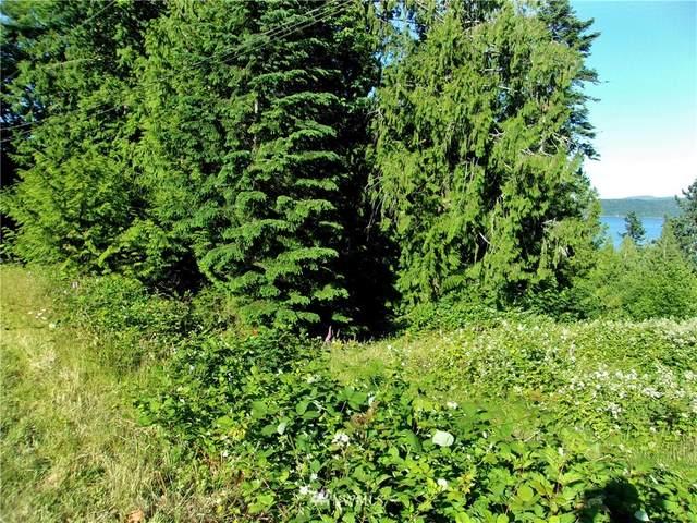 0 Lot 10 Forest Drive, Brinnon, WA 98320 (#1793560) :: Keller Williams Western Realty
