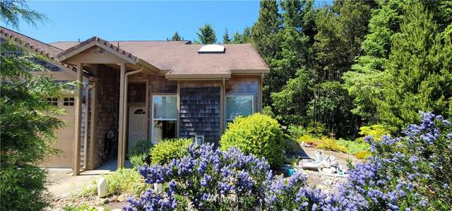 132 28th Street NW, Long Beach, WA 98631 (#1793575) :: Commencement Bay Brokers