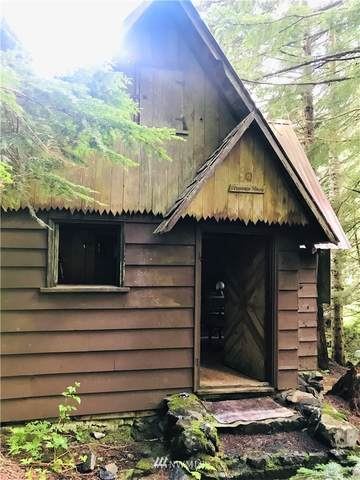 28 Denny Creek Road, Snoqualmie Pass, WA 98068 (#1793732) :: Better Homes and Gardens Real Estate McKenzie Group