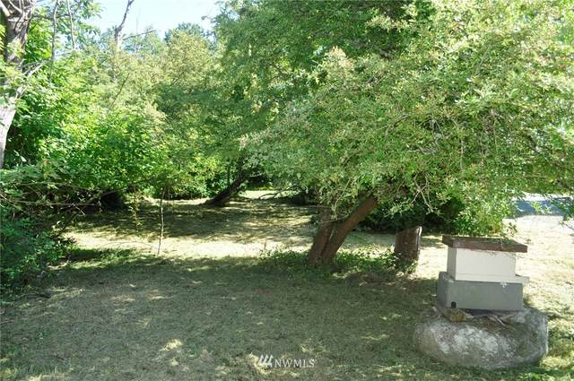 1921 Sucia Way, Point Roberts, WA 98281 (#1793982) :: Ben Kinney Real Estate Team