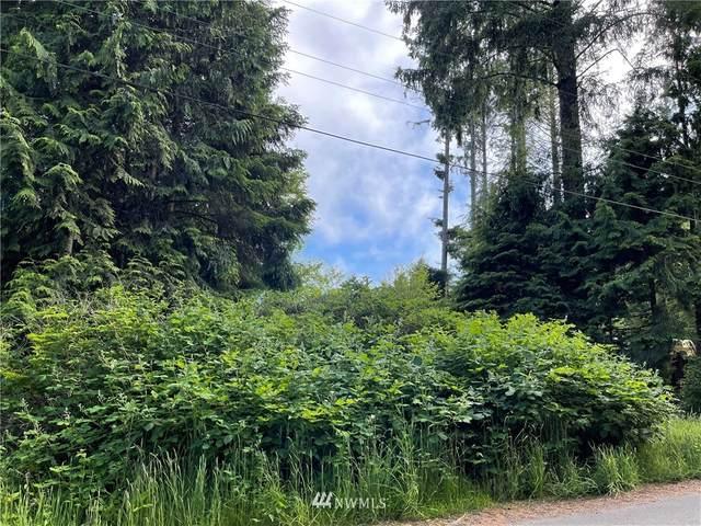 46 Moonrise Lane, Pacific Beach, WA 98571 (#1794008) :: Northwest Home Team Realty, LLC