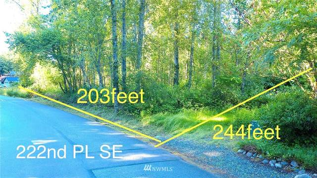 26420 222nd Place SE, Maple Valley, WA 98038 (#1794566) :: Becky Barrick & Associates, Keller Williams Realty