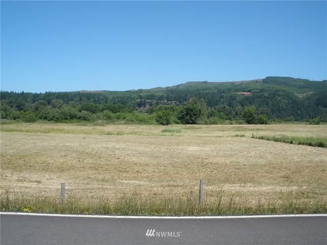0 E Little Island Road, Cathlamet, WA 98612 (#1794594) :: Better Properties Lacey