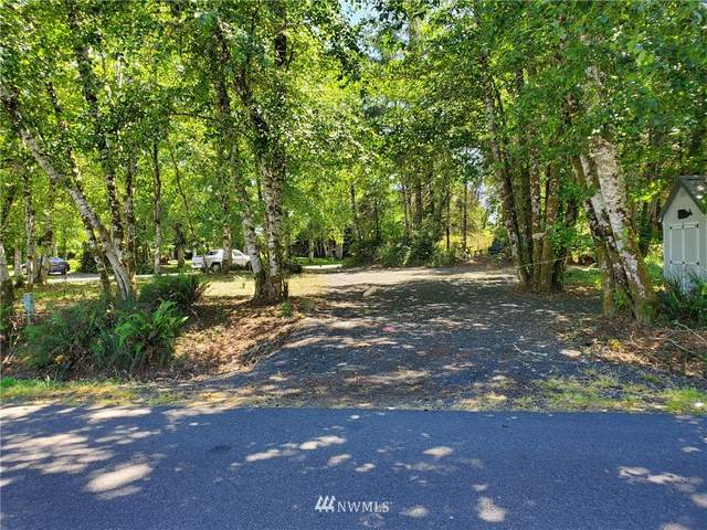 441 Duck Lake Drive NE, Ocean Shores, WA 98569 (#1794608) :: NW Homeseekers