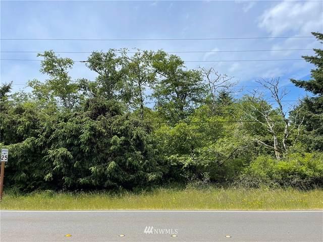 667 Dolphin Avenue NE, Ocean Shores, WA 98569 (#1794701) :: Better Properties Lacey