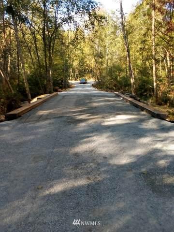 21562 Little Mountain Road, Mount Vernon, WA 98274 (#1794709) :: The Kendra Todd Group at Keller Williams
