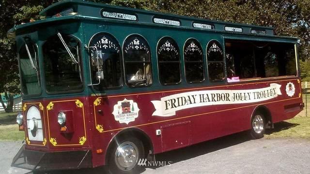85 Front Street, Friday Harbor, WA 98250 (#1794749) :: The Shiflett Group