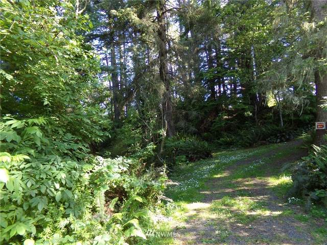 0 Hwy 101, Ilwaco, WA 98644 (#1794866) :: Commencement Bay Brokers
