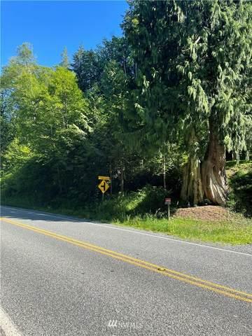 0 S Skagit Highway, Sedro Woolley, WA 98284 (#1795017) :: Simmi Real Estate