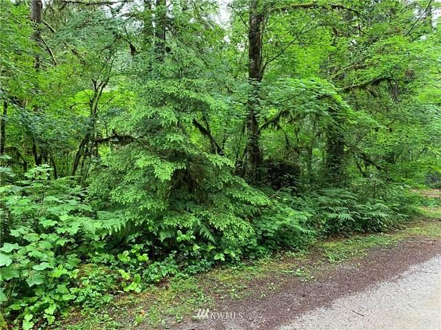63783 W Cascade Drive, Marblemount, WA 98267 (MLS #1795019) :: Brantley Christianson Real Estate