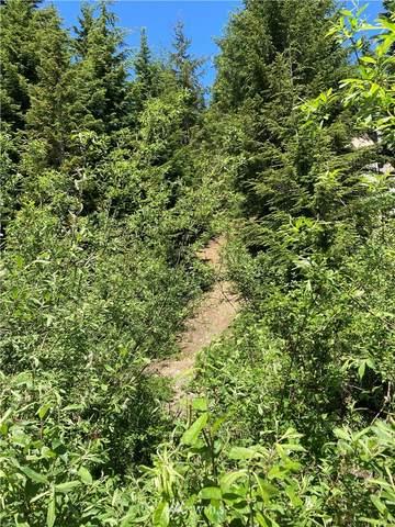 0 Olson Drive, Snoqualmie Pass, WA 98068 (#1795207) :: Keller Williams Western Realty