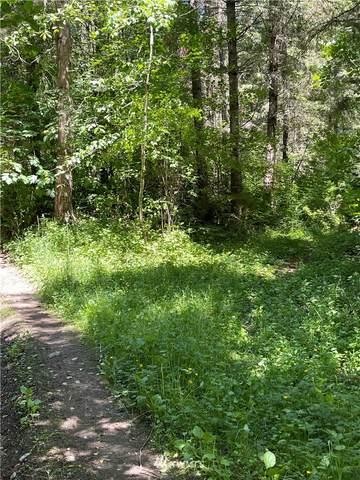 0 Mountain Highway E, Eatonville, WA 98328 (#1795279) :: NW Homeseekers