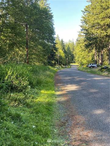 391 E Agate Drive, Shelton, WA 98584 (#1795295) :: Keller Williams Western Realty