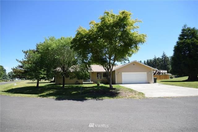 30 Loop Drive, Sequim, WA 98382 (#1795653) :: NW Homeseekers