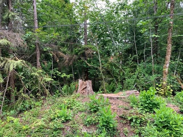 15010 Picket Lane, Glacier, WA 98244 (#1796335) :: Better Properties Real Estate