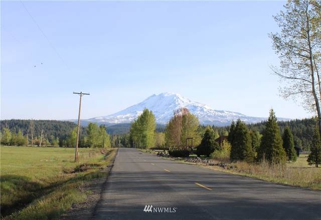 0 Mt Adams Recreation Area Road, Trout Lake, WA 98650 (#1796706) :: Stan Giske