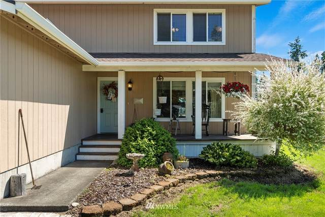 8919 183rd Avenue SW, Rochester, WA 98579 (#1797495) :: Better Homes and Gardens Real Estate McKenzie Group