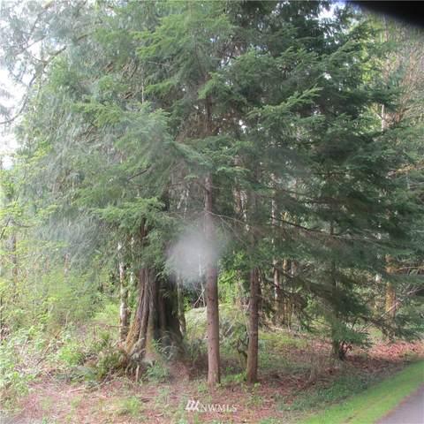 10333 Glacier Rim Drive, Glacier, WA 98244 (#1797819) :: Home Realty, Inc