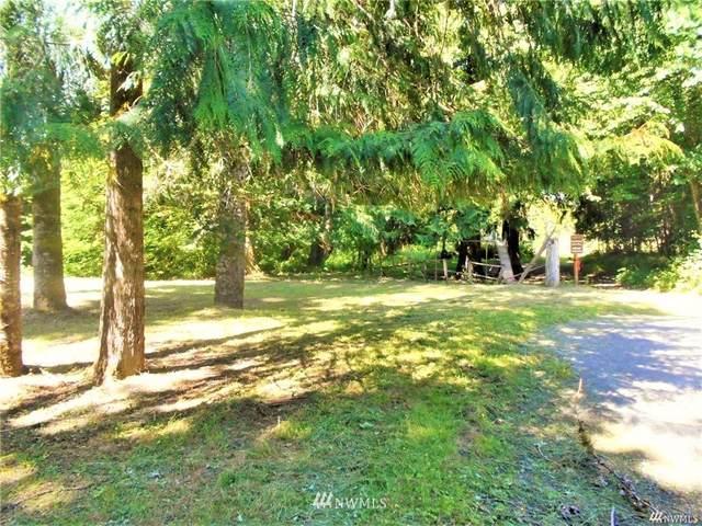 800 Mountain Trail Road, Brinnon, WA 98320 (#1797883) :: Better Properties Real Estate