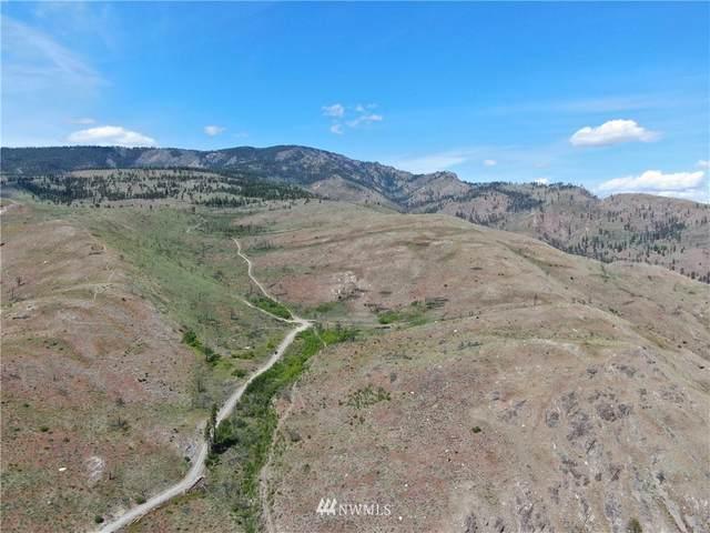 436 Antoine Creek Road, Chelan, WA 98816 (#1798297) :: NW Homeseekers