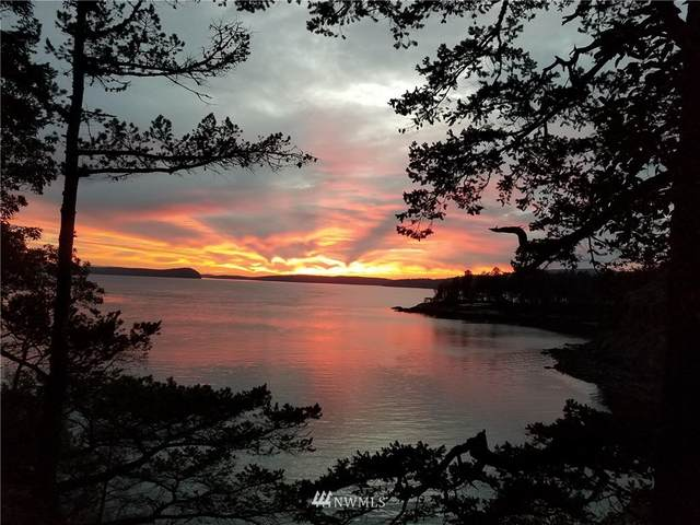 474 Point Of View Ln., Orcas Island, WA 98279 (#1798542) :: Shook Home Group
