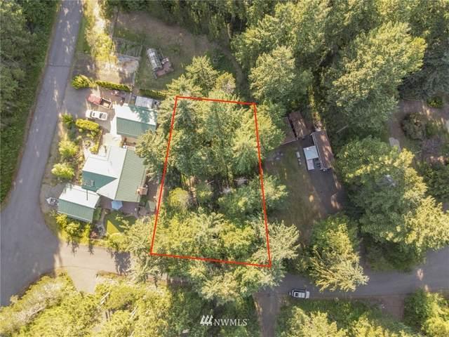 31 N Kingsway N, Hoodsport, WA 98548 (#1798836) :: M4 Real Estate Group