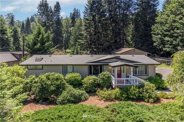 70 Mustang Lane, Brinnon, WA 98320 (#1799123) :: Better Properties Real Estate