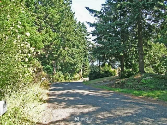 1184 Beach Avenue, Lummi Island, WA 98262 (#1799163) :: Alchemy Real Estate