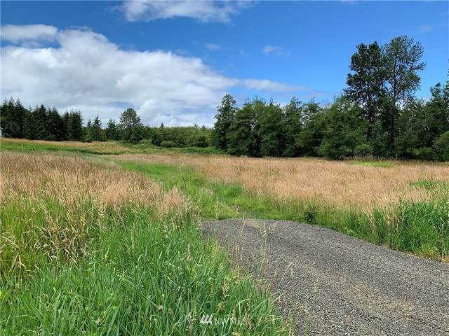 15 Foster Road, Cathlamet, WA 98612 (#1799230) :: Lucas Pinto Real Estate Group