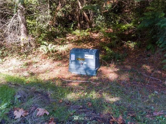 0 Black Bear Lane, Centralia, WA 98531 (#1799887) :: Alchemy Real Estate
