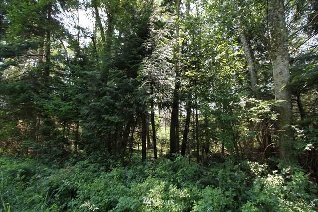 153546 Moose Trail, Point Roberts, WA 98230 (#1800418) :: NW Homeseekers