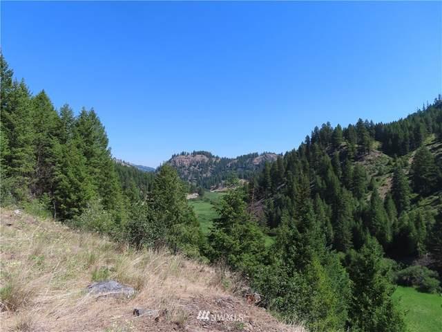 0 Blissful Trail Lane, Republic, WA 99166 (#1800620) :: Better Properties Real Estate