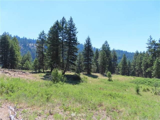 0 Blissful Trails Lane, Republic, WA 99166 (#1800707) :: Ben Kinney Real Estate Team