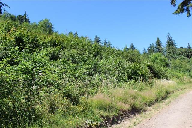 415 Clearwater Road, Kelso, WA 98626 (#1801306) :: The Snow Group