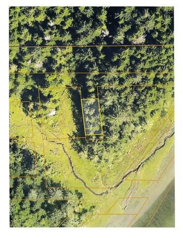 0 Oregon, Aberdeen, WA 98520 (#1802085) :: Pickett Street Properties