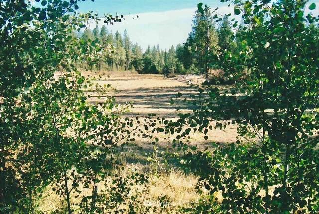 11300 S Strangland Road, Medical Lake, WA 99022 (#1802471) :: Alchemy Real Estate