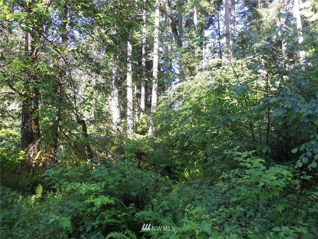 10608 Edgewood Drive, Anderson Island, WA 98303 (#1802657) :: Lucas Pinto Real Estate Group