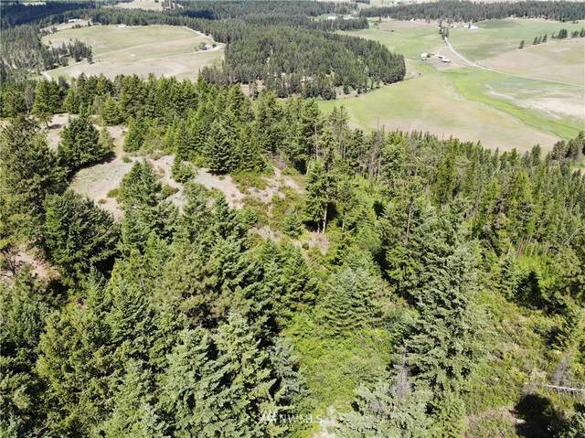 2420 A Cedonia-Addy Rd, Addy, WA 99101 (#1803199) :: Better Properties Real Estate