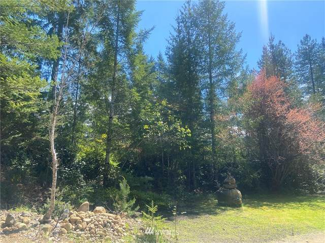 900 Collins Lake Drive NE, Tahuya, WA 98588 (#1803284) :: Stan Giske