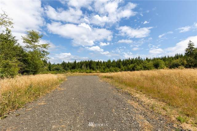 420 SE Legacy Lane, Shelton, WA 98584 (#1803349) :: Ben Kinney Real Estate Team