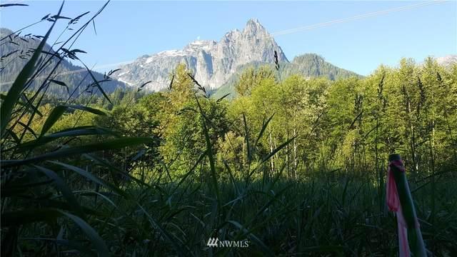 49720 Mt Index River Road, Gold Bar, WA 98251 (#1803571) :: The Kendra Todd Group at Keller Williams