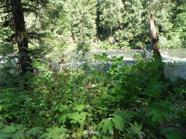 487 xx SE Middle Fork Road, North Bend, WA 98045 (#1803704) :: Neighborhood Real Estate Group