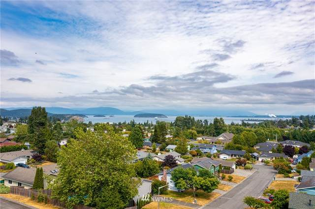 3909 View Ridge #14, Anacortes, WA 98221 (#1803910) :: Ben Kinney Real Estate Team
