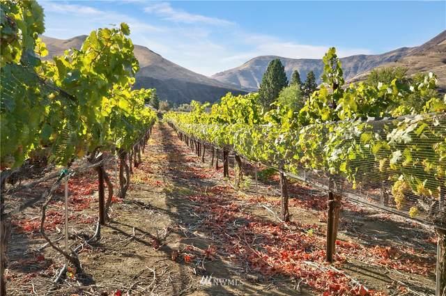 411 Roza View Drive, Yakima, WA 98901 (#1804401) :: Better Properties Lacey