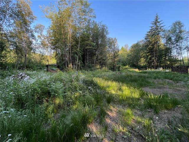0 314th Place NW, Stanwood, WA 98292 (#1804895) :: Icon Real Estate Group