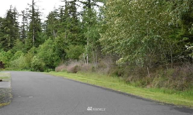 0 Lindshier Avenue, Bellingham, WA 98226 (#1805350) :: Stan Giske